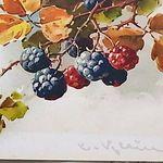 Francoise Carter Fcarter0063 Sur Pinterest
