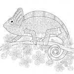 Omeletozeu Cute Coloring Pages Animal Coloring Pages Cat Coloring Page