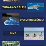 Roteiro De 10 Dias Em Quintana Roo No Mexico Peninsula De