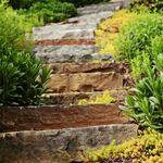 Landscape Ideas Landscaping Ideas Outdoor Living Area Asheville