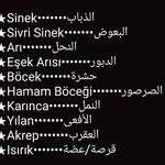 Pin By Arwa Al Kanderi On جمل للمحادثات اليومية5 English Phrases Learn English Words Learn English
