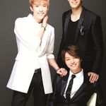 Royal pirates betting everything mp3 download current betting odds for presidential election