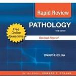 oxford handbook of medical imaging pdf free download