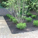 Jg Landscape Design Jandglandscape On Pinterest