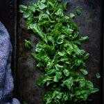 dusana Sev (dush723) on Pinterest