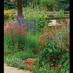 Fine Gardening Magazine Finegardening Profile Pinterest