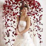 d1d894227562 Keasha Willingham-Brickell (keash) on Pinterest