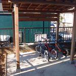 自転車置き場のdiy 木造軸組工法で組み上げる Nohmiso Com 自転車 自転車置き場 木造
