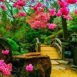 14c06af49c AZAHAR LENCERIA (azaharlenceria) auf Pinterest