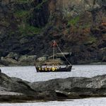 news article rekindles trade conflict canada lumber