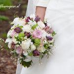 Fleur Geur Fleurgeur Op Pinterest