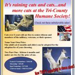 Home Tri County Humane Society St Cloud Minnesota Humane Society Cat S Society