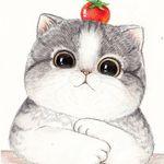 LiSa (elizabethfirefly) on Pinterest