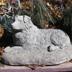 Anne Springer Dog Trainer