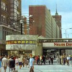 1960 Berliner Zoo Nilpferd Bulette Beisst Ihren Vater Knautschke