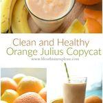 Orange julius recipe from orange juice