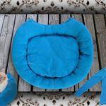 Bkh Kitten Britisch Kurzhaar Seal Tabby Point Mit Stammbaum In Nordrhein Westfalen Freudenberg Britisc Britisch Kurzhaar Katze Britisch Kurzhaar Bkh Kitten