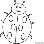 9 أنشطة تزيد ذكاء الطفل على كتاب الدعسوقة العابسه للكاتب ايرك كارل The Grouchy Lady Bug Letter D Worksheet Ladybug Lettering