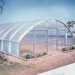 Perfect Little Greenhouse Erin Douglas Hatton Diy Mini Greenhouse Greenhouse Mini Greenhouse