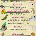 Pin By Oussama Benslimane On Nids D Oiseaux Job