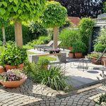 Raumteiler Stilo Mit Einsatz Anthrazit In 2020 Pflanzkubel Raumteiler Pflanzen