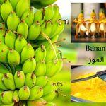 Pin On Fruit Of Coconuts ثمرة جوز الهند