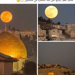 صور القدس 2021 اجمل صور مكتوب عليها القدس عربية Dome Of The Rock Jerusalem Mount Of Olives