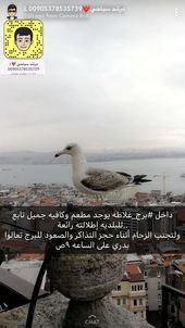 Pin By Barbie Sam On Istanbul Travel And Tourism Turkey Tourism City Travel