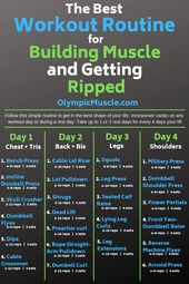Die beste Workout-Routine   – Olympic Muscle Blog Posts –