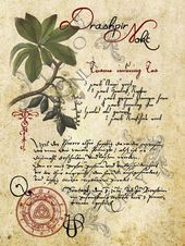 Grimoire, Spell, Herbs and Book of Shadows Pages, Practical Magic; The Cackling Cauldron ~ Book of Shadows: Spell set 2 – BOS