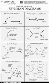 The Feynman Diagrams Have Many Uses 2