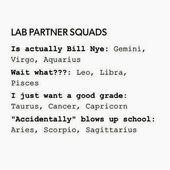 Lab Partner Squads