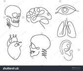 One line human organs set design silhouette.Logo design. Hand drawn minimalism s...