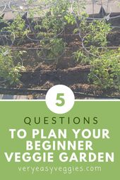 Learn more about beginner gardening tips #beginnergardeningtips,  #Beginner #beginnergardenin…