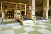 Mino Onsen Super Garden Hot Springs Spa | OSAKA-IN…
