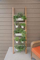 Clevere vertikale Kräutergärten, die auf kleinem Raum eine Menge Kräuter anbauen