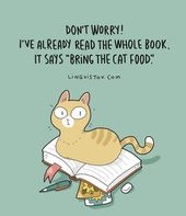 """Lingvistov on Instagram: """"Lingvistov.com – Go to our on-line store!  #humorous #illustration #doodle #drawing #cute #quotes #jokes #comics #cats #cats🐱 #catsofinstagram…"""""""
