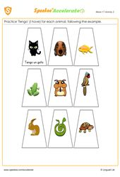 Spanish Pets Worksheet Spanish Printables Homeschool Spanish Pets