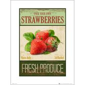Poster Strawberries Pick Your Own ScanMod Design Format: frame made of oak, …