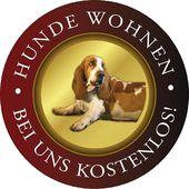 Hunde Wohnen Bei Uns Kostenlos Hotel Magdalena Im Zillertal Tirol Urlaub Mit Hund Zillertal Wellnessurlaub