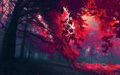 RED TREE WALLPAPER
