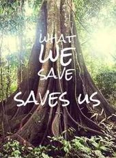 What we save, saves us – #quotes #save #saves
