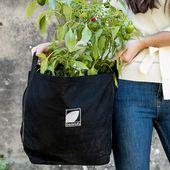 The Vegetable Backyard Subscription