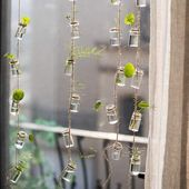 Frazee rustikaler Seil-hängender Glaspflanzer – #…