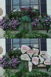 #avec #cette #couleur #fleurs #jardinière #Les