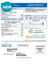 Usa Illinois Nicor Gas Utility Bill Template In Word Format Bill Template Gas Utility Utility Bill
