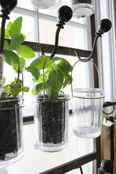 Finally Unlock The Secret To Successful Gardening