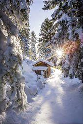 Photo of Coen Weesjes – Schneebedeckte Hütte im Wald Coen Weesjes Schneebedeckte Hütte in …