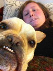 Saçma Selfie'nizin Bir Parçası Olmak İstemeyen 51 Hayvan – Sayfa 3/5 – Wackyy