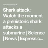 Shark attack: Watch the moment a prehistoric shark attacks a submarine | Science... 2